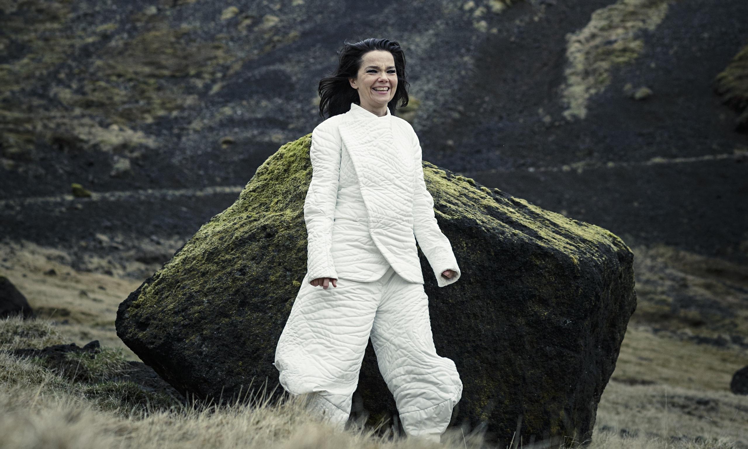 Bjork-in-Iceland-014.jpg