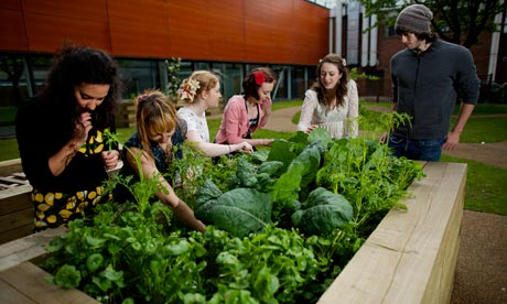 The Green league 2013: which universities are top of the class?