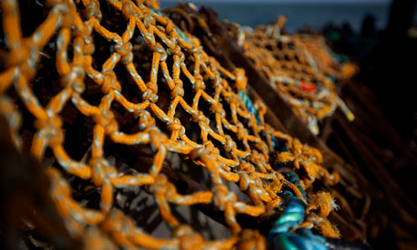 Fishermen agree to limit lyme bay catches environment for Fish net company