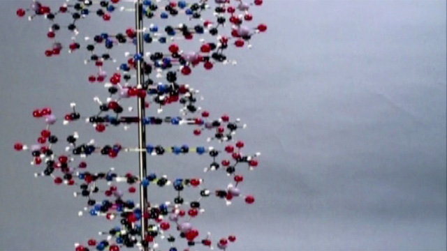 DNA double helix: how James Watson and Francis Crick cracked the secret of life – video