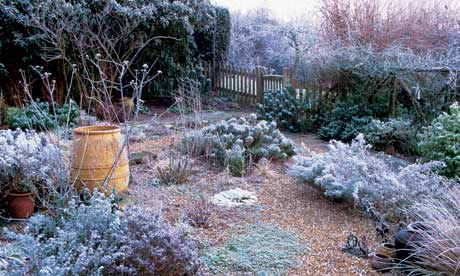 Garden Design Garden Design with Winter Gardens Sheffield Winter