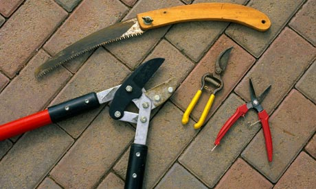 Alys Fowler: gardening tools | Life and style | The Guardian