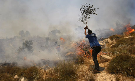 A Palestinian tries to put out a fire started by settlers on the West Bank, where confidential EU reports say violence against Palestinians is increasing. Photograph: Menahem Kahana/AFP/Getty Images