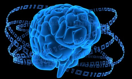 The brain is made up of a series of interlocking systems. Photograph: Sebastian Kaulitzki / Alamy/Alamy