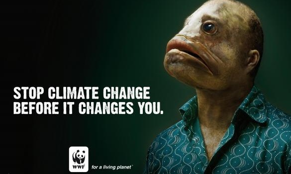 IMPORTANT! Loving our Environment: Climate Change Campaigns