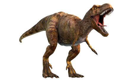 [Image: Tyrannosaurus-rex-or-T-re-008.jpg]