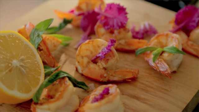 Perfect butterflied prawns - Bondi Harvest video recipe | Life and style | guardian.co.uk
