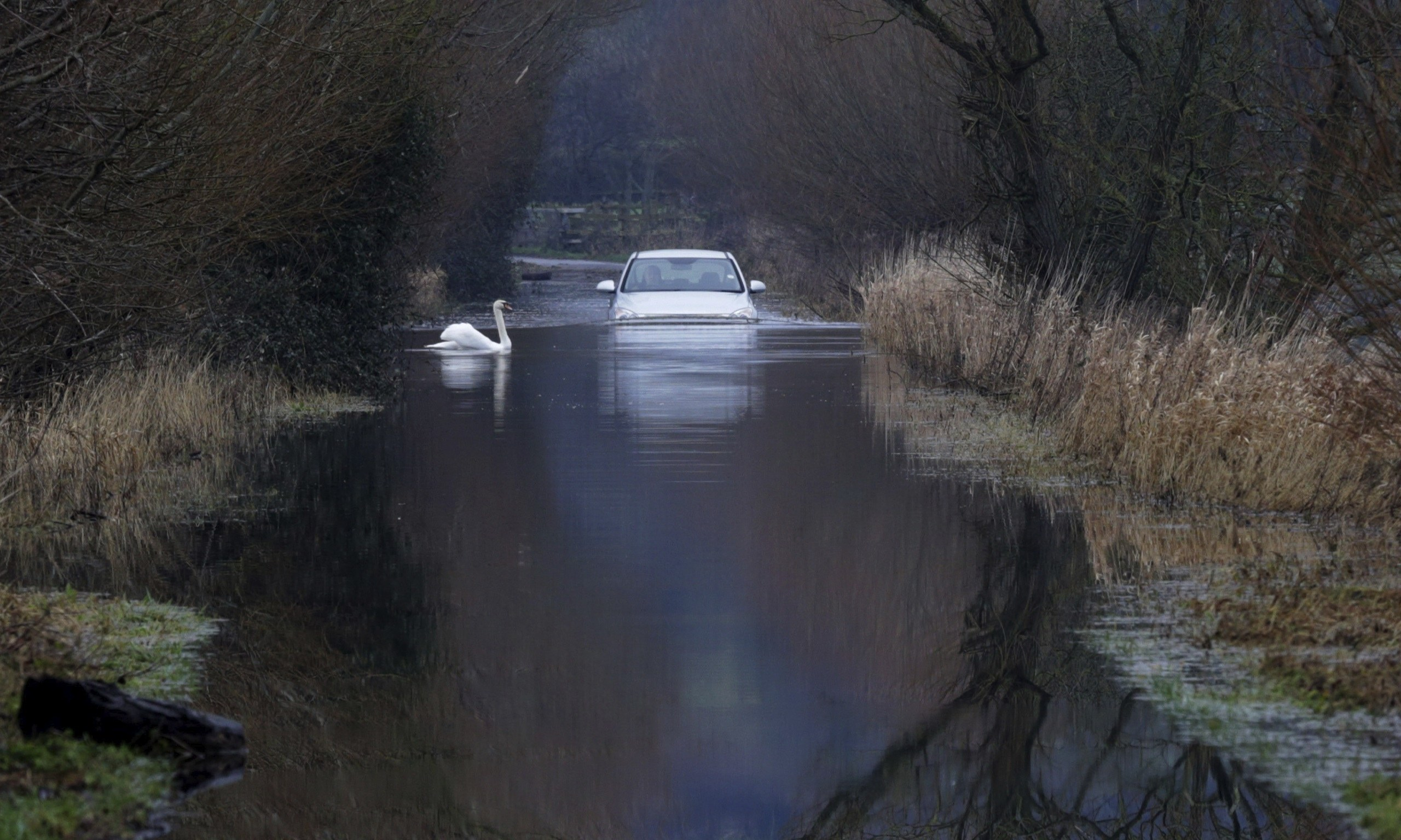 UK floods: MoD steps in to send army to Somerset Levels ...