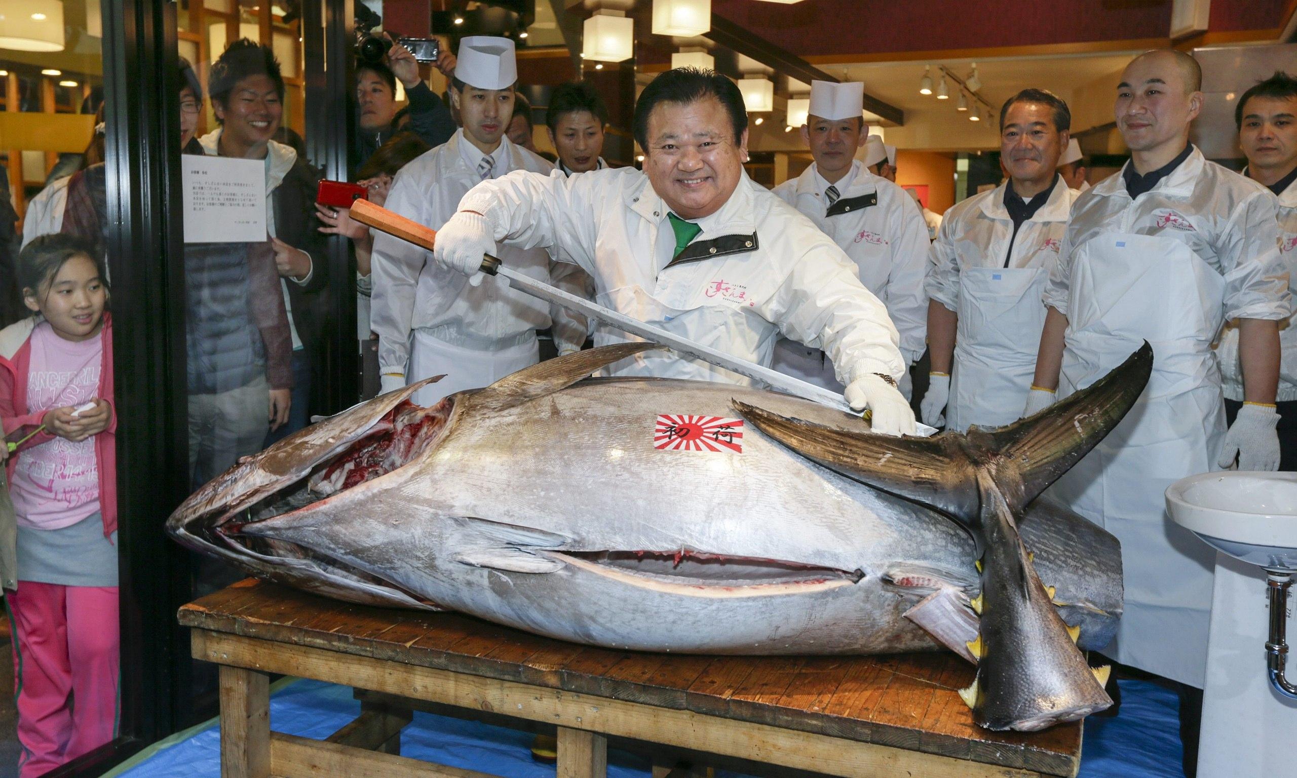 Price of bluefin tuna falls at tokyo auction world news for Tuna fish price