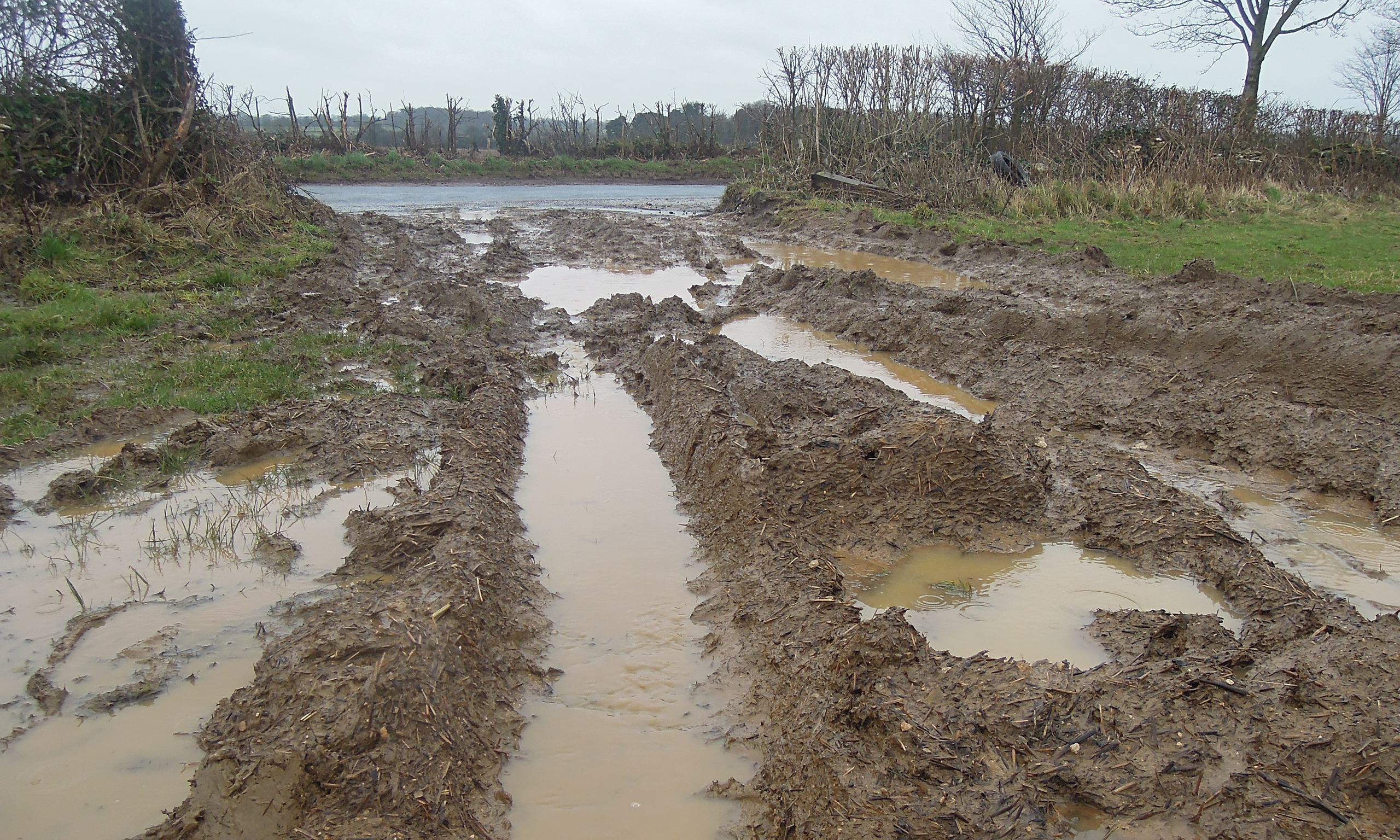 How We Ended Up Paying Farmers To Flood Our Homes George