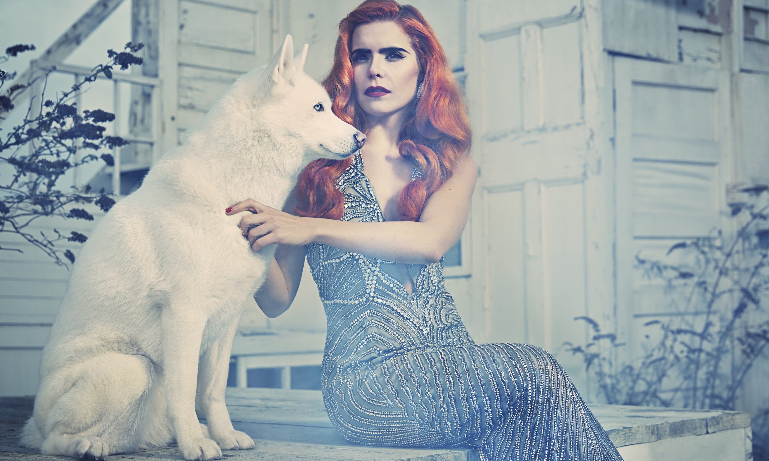 Paloma Faith A Perfect Contradiction Review Ndash Consistent