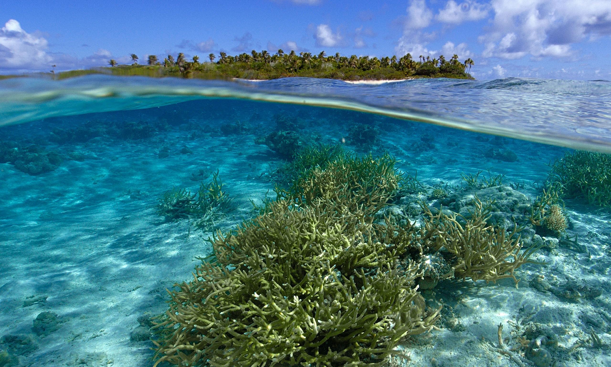 Rising Seas Wash Japanese War Dead From Marshall Islands