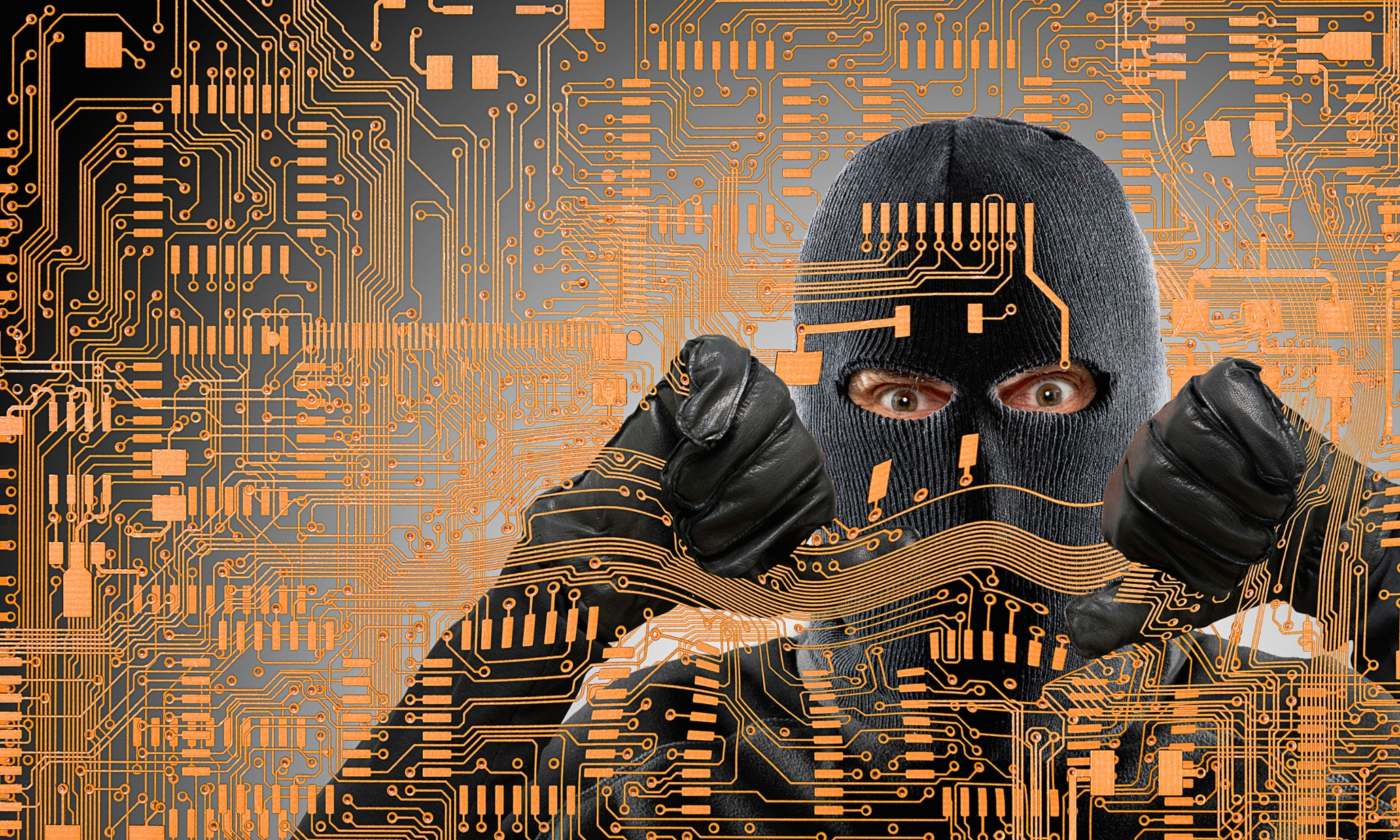 ski mask robber computer data