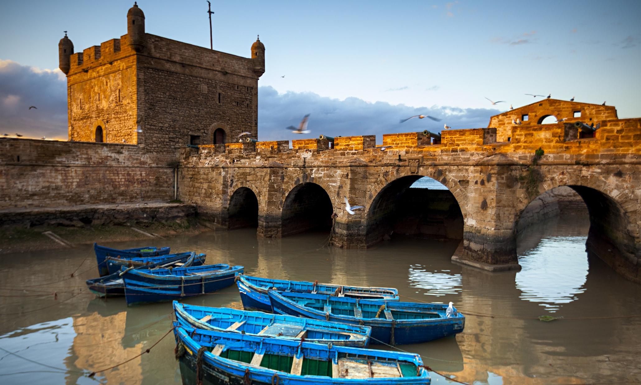 Essaouira guardian