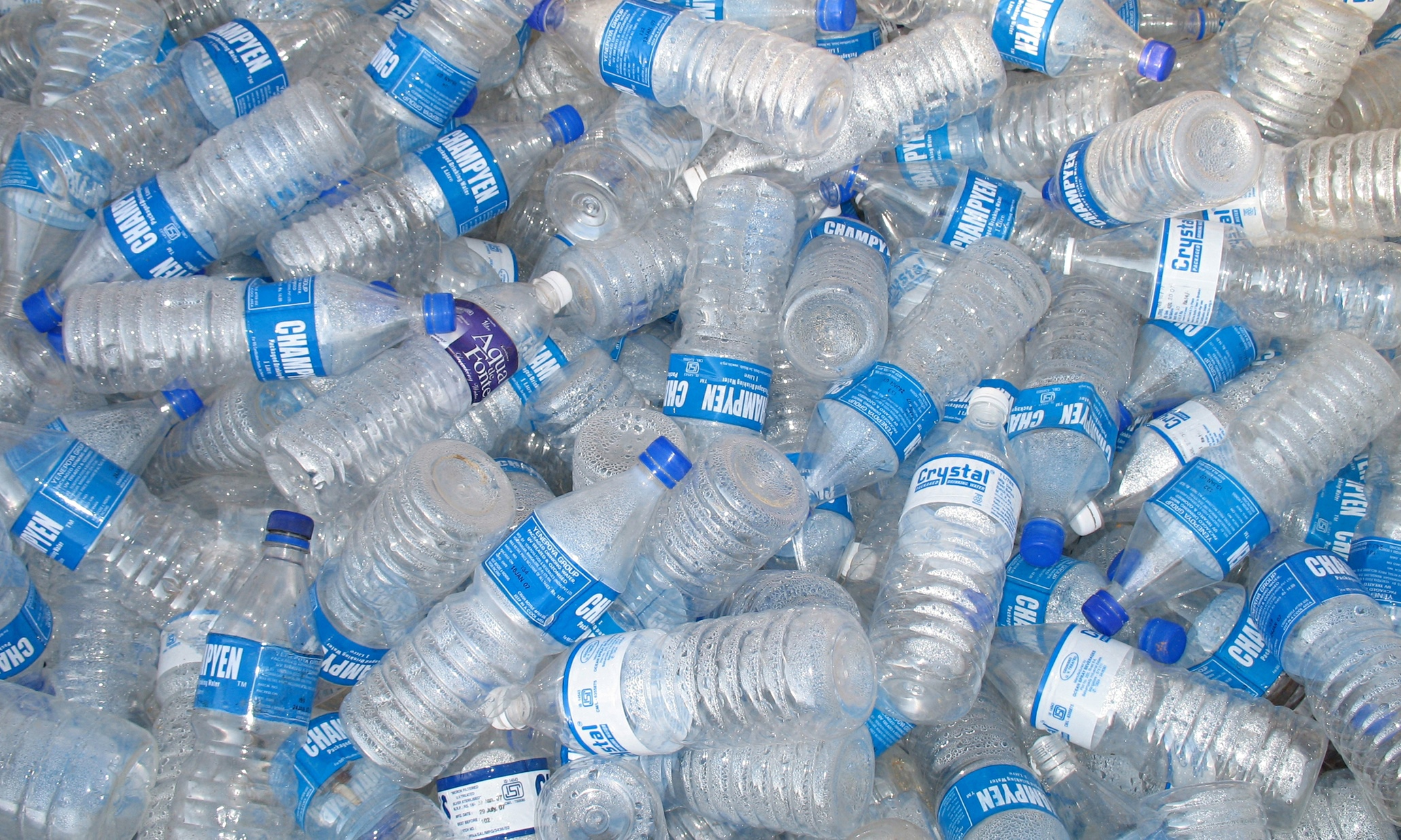 The cold truth about our thirst for bottled water lucy for What can we make out of plastic bottles