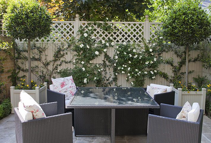 Tiny Courtyard Garden In Chiswick Pictures Life And