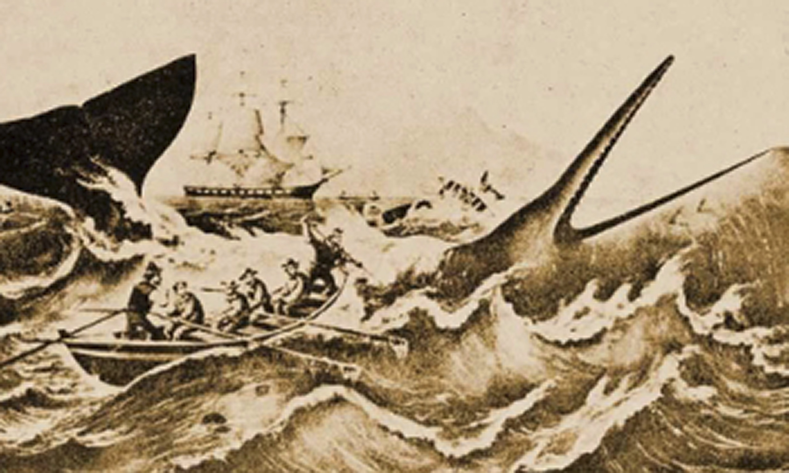 The 100 Best Novels No 17 Moby Dick By Herman Melville