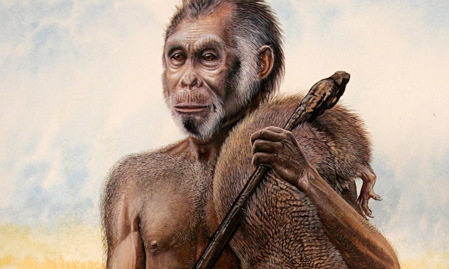 Homo Floresiensis Scientists Clash Over Claims Hobbit