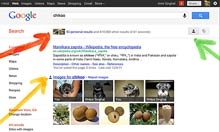 Thumbnail for Google search changes are bad for the internet, says Twitter