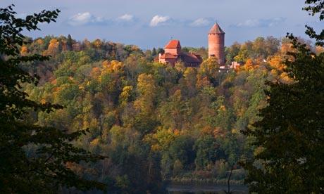cosas gratis por el mundo letonia arboles bosque navidad